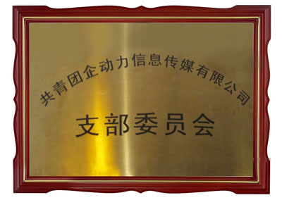 共青团企动力信息传媒贝博app手机版支部委员会